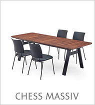 chess massiv icon